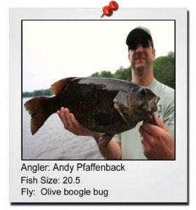 andy-pfaffenback