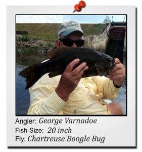 george-varnadoe-20-inch