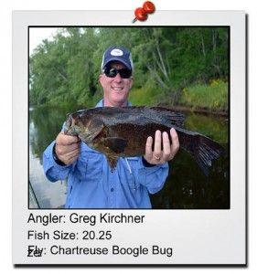 greg-kirschner-20
